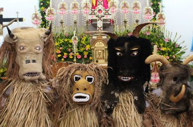 Hortelano Mask Uruapan Michoacan